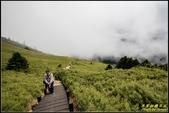 合歡山東峰步道:IMG_06.jpg