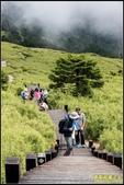 合歡山東峰步道:IMG_07.jpg