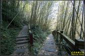 瑞里‧青年嶺步道、千年蝙蝠洞、燕子崖:IMG_02.jpg