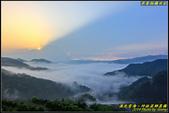 坪林茶園‧日出雲海:IMG_05.jpg