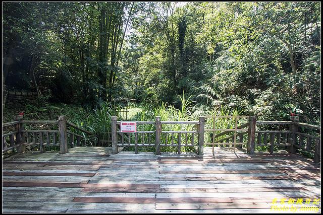 頭社水庫生態步道:IMG_32.jpg