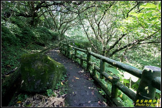 青山瀑布:IMG_10.jpg