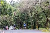 竹子湖‧黑森林:IMG_01.jpg