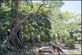 墾丁森林遊樂區‧地質與生態奇景:IMG_12.jpg