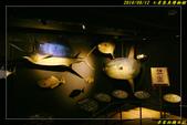 七星柴魚博物館:IMG_07.jpg