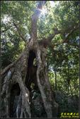 墾丁森林遊樂區‧地質與生態奇景:IMG_10.jpg