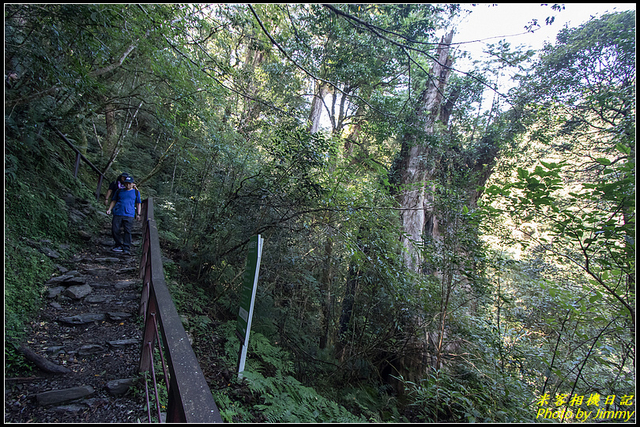 IMG_33.jpg - 拉拉山自然保護區