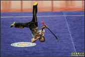 2016年第九屆亞洲武術錦標賽:IMG_06.jpg