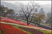 北投富良野花海:IMG_04.jpg