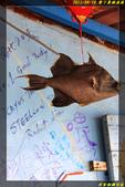 墾丁鼻頭漁港:IMG_13.jpg