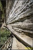 瑞里‧青年嶺步道、千年蝙蝠洞、燕子崖:IMG_15.jpg