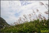 東引‧烈女義坑、一線天:IMG_10.jpg