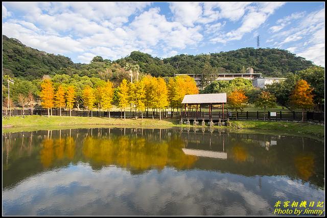 IMG_04.jpg - 原住民文化主題公園落羽松