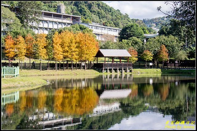 IMG_17.jpg - 原住民文化主題公園落羽松