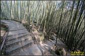 長源圳生態步道、孟宗竹林古戰場:IMG_11.jpg