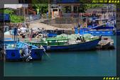 龍洞漁港:IMG_04.jpg