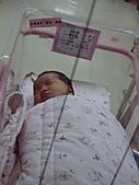 家族的寶貝:表哥的小女兒(涵雅)