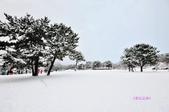 《愛玩足跡》2017.11.29.北海道五日遊:北海道...22017.11.30 840.JPG