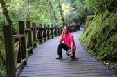《愛玩足跡》2014.10.18.拉拉山神木之旅-1:2014.10.18.拉拉神木之旅 044.jpg