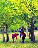 《愛玩足跡》2017.11.22.福壽山賞楓紅:2017.11.22.福壽山拍楓 491.JPG