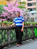 《愛玩足跡》2018.03.17.土城希望之河櫻花:2018.03.17.羅東林業文化園區 129.JPG