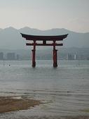 6 days in Japan:廣島的神社
