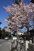 關西賞櫻花行DAY3:吃完早餐前往奈良