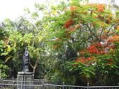 我的學習園地:花團錦簇的後花園.jpg