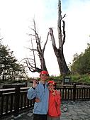 2010.Nov-[南投信義] 麟趾山:41_夫妻樹見證我們修成正果的愛情.JPG