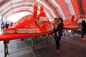 2017.Dec-[台南安平] 四草綠色隧道、漁光島、德陽艦:14_用米堆成的重量級壽龜.JPG