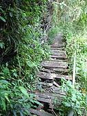 2008.Sep-[高雄茂林] 茂林:18_一路上年久失修的棧橋.jpg