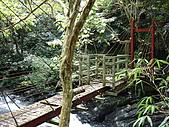 2008.Sep-[高雄茂林] 茂林:19_迷你吊橋.JPG