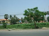 2008.Mar-[柬埔寨] 金邊、吳哥窟:013_6號公路沿途風光-1_resize.jpg