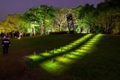 2020.Jan-[台中西區] 台灣光影藝術節:光之書寫:06_光電獸#19-草與樹.jpg