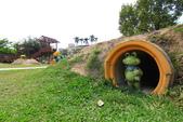2020.Apr-[嘉義市、六腳] 森林之歌、嘉義文化公園、蒜頭糖廠:08_四處都有樹蛙的蹤跡.JPG