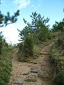2010.Nov-[南投信義] 麟趾山:26_叉路請向左〈向右可至一觀景點〉.JPG
