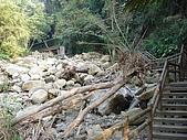 2008.Nov-[南投中寮] 福盛山農場&龍鳳瀑布:24_遭逢巨變的溪流.JPG