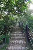 2020.Oct-[台中大肚] 萬里長城登山步道:06_砌石階梯.JPG