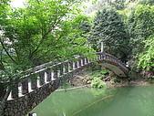 2009.Apr-[南投竹山] 杉林溪:07_別緻的小橋.JPG
