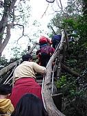 2008.Feb-[台中北屯區] 大坑4號步道:03_陡峭的階梯.jpg