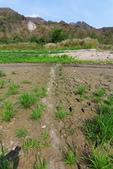 2021.Apr-[台南南化] 南化水庫、刣牛湖山:05_越過河谷.JPG