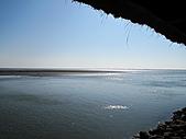 2011.Feb-[台南] 台江國家公園:13_黑面琵鷺保護區〈但已鳥去樓空....〉.JPG
