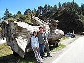 2009.Mar-[宜蘭大同] 太平山:19_翠峰湖入口.JPG