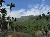2009.Feb-[南投國姓] 岩山:09_這是我們要爬的山嗎.JPG