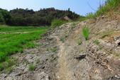 2021.Apr-[台南南化] 南化水庫、刣牛湖山:10_路徑算明顯.JPG
