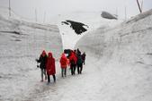 2014.Jun-[日本富山、長野] 立山黑部:14_沒看到大雪壁,看看小雪壁過過乾癮.JPG