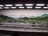 日本:數十部模型車