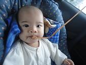 小Baby相片-2:DSC07803.JPG