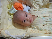 小Baby相片-2:DSC07726.JPG