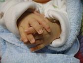 小Baby相片-2:DSC06983.JPG